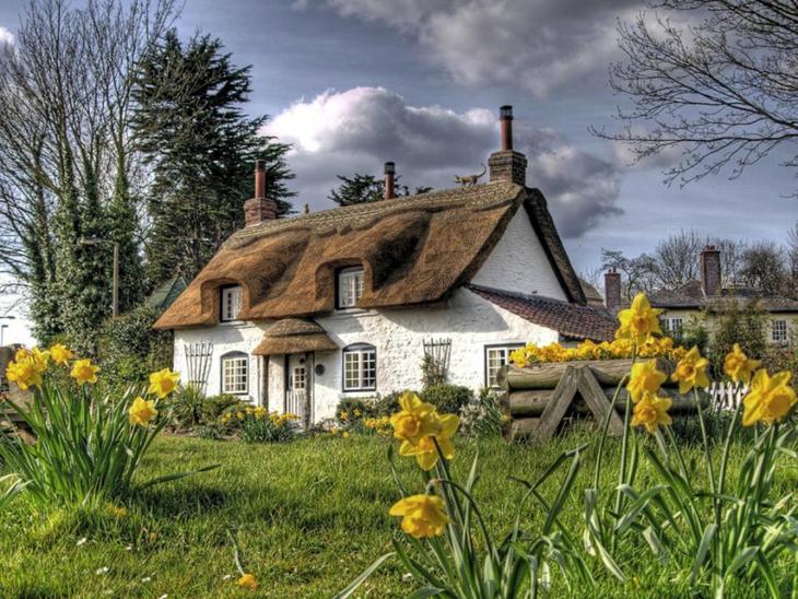 عکس های خانه های زیبا و رویایی